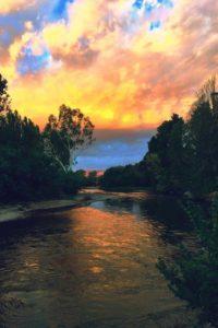 Riverglade Caravan park river frontage sites
