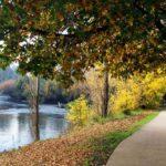 Riverwalk-Tumut