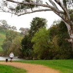 Tumut-River-walking-trail