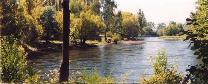 Tumut River Walk