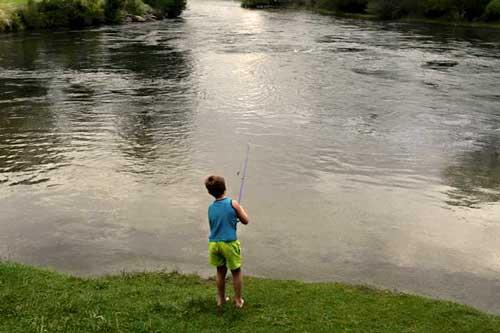 Fishing tumut river Riverglade Caravan Park