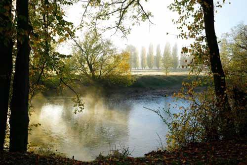 Early morning mist on the river Riverglade caravan park tumut